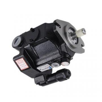 Daikin RP23C12H-37-30 Rotor Pumps
