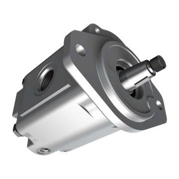 Parker PV020R1K1T1VFDS Axial Piston Pump