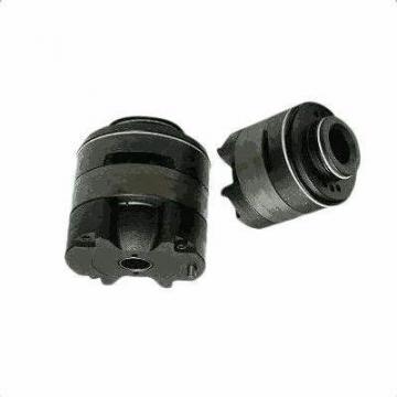 Yuken PV2R23-53-125-F-RAAA-41 Double Vane Pumps