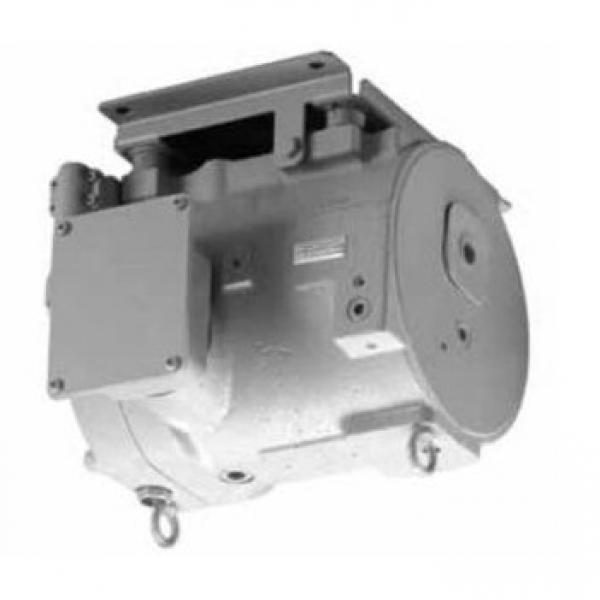 Daikin JCA-F10-04-20 Pilot check valve #1 image