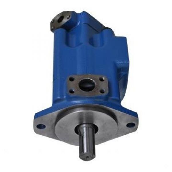 NACHI IPH-35B-16-40-11 Double IP Pump #1 image