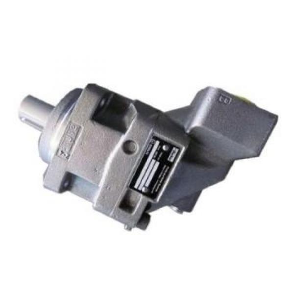 Parker PV180R2K1T1NFWS Axial Piston Pump #1 image