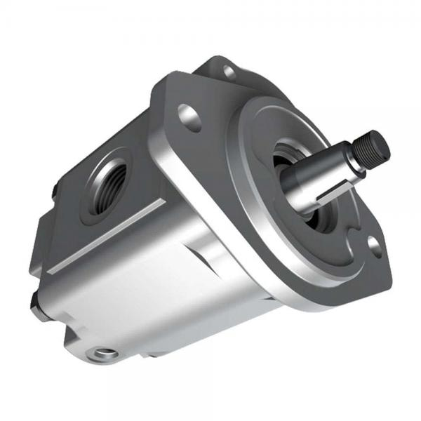 Parker PV028R1K1JHNMMC Axial Piston Pump #3 image