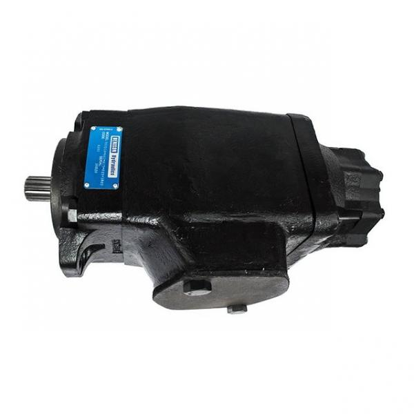 Parker PV020R1K1T1NMM1 Axial Piston Pump #1 image