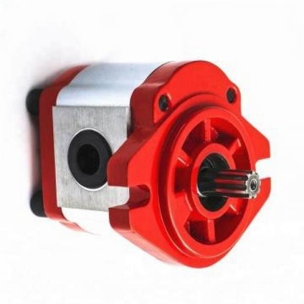 Rexroth A10VSO45DFLR/31R-PPA12K01 Axial Piston Variable Pump #1 image