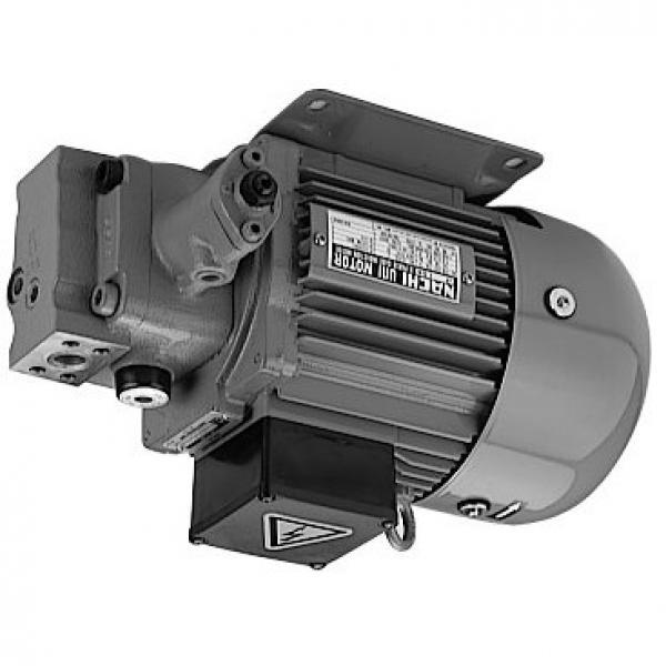 Sumitomo QT6153-200-50F Double Gear Pump #1 image