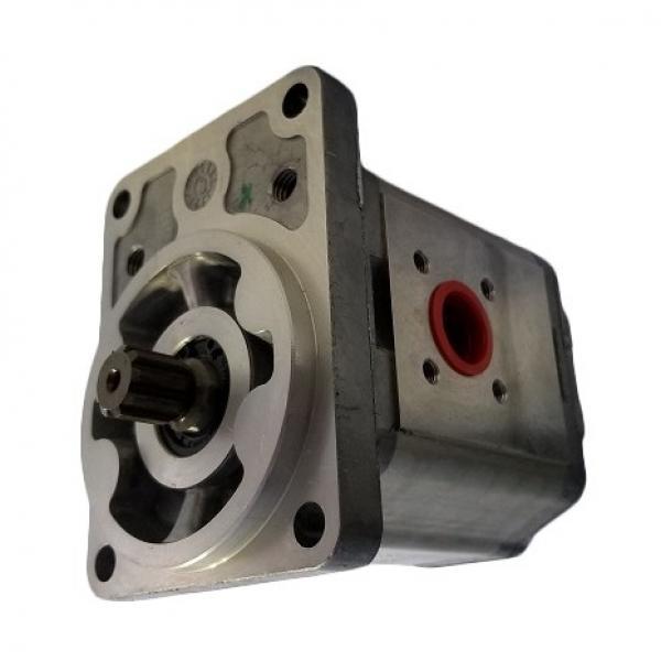 Sumitomo QT6253-125-50F Double Gear Pump #3 image