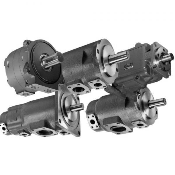 Sumitomo QT5133-100-16F Double Gear Pump #1 image