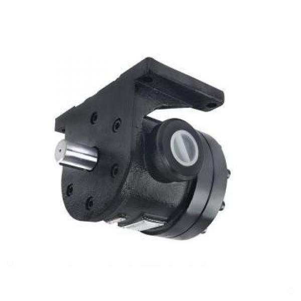 Tokyo Keiki/Tokimec P100V-RSG-11-10-J Variable Piston Pump #1 image
