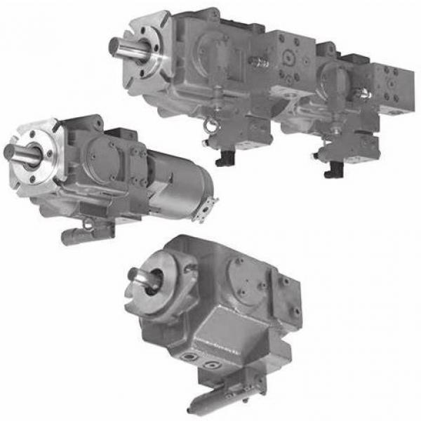 Tokyo Keiki/Tokimec P100V3L-2AGVF-10-S-14 Variable Piston Pump #2 image