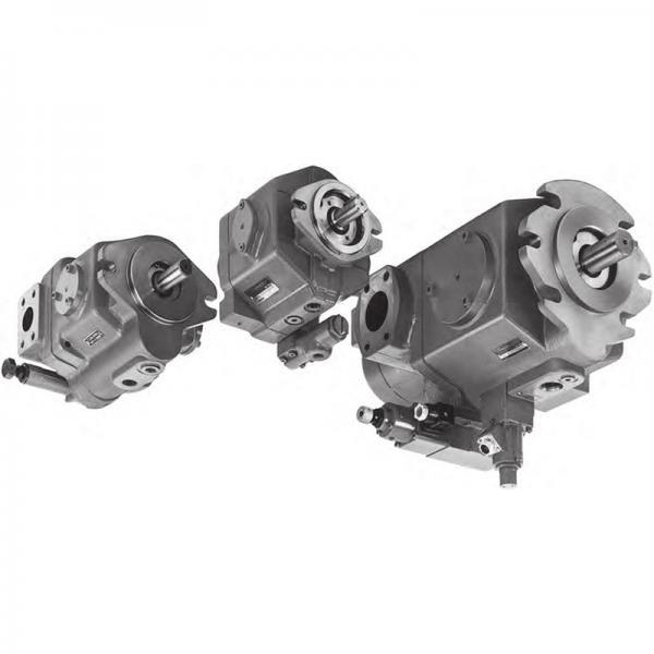 Tokyo Keiki/Tokimec P40V-RSG-11-CMC-10-J Variable Piston Pump #1 image