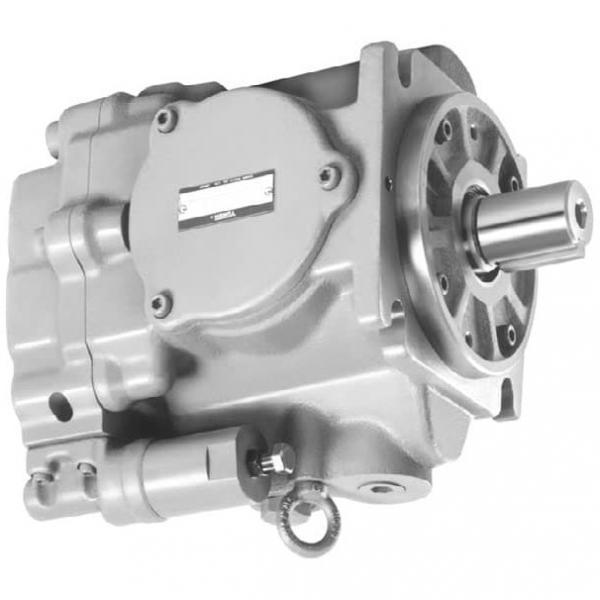Yuken PV2R14-14-184-F-RAAA-31 Double Vane Pumps #1 image