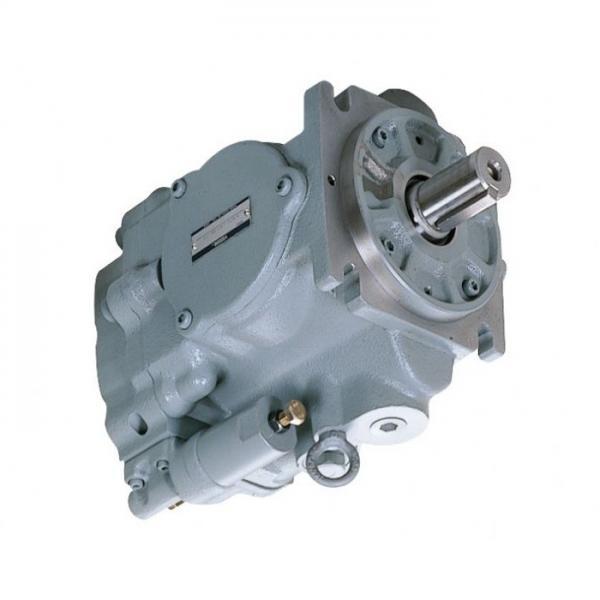 Yuken PV2R12-17-33-L-RAA-40 Double Vane Pumps #1 image