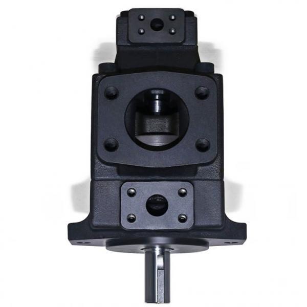 Yuken PV2R33-76-60-F-RAAA-31 Double Vane Pumps #1 image