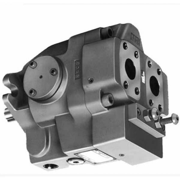Yuken PV2R13-19-66-F-RAAA-41 Double Vane Pumps #1 image